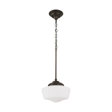 Sea Gull 65438-782 - Large One Light Pendant